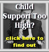 father s rights family law legal help and information rh fathersrightsinc com father's rights survival guide free tennessee father's rights survival guide california pdf